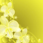 Background with yellow orchids — Stock Vector