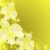 Fond avec orchidées jaunes — Vecteur