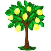 Lemon tree — Stock Vector