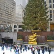 Постер, плакат: Rockefeller Center Tree