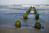 贝尔马海岸线 — 图库照片