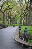 Benches Central Park — Stock Photo