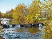 Autumn Park Falls — Stock Photo