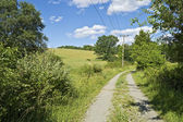 Rural Dirt Road — Stock Photo