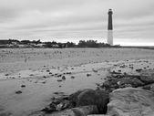 Barnegat Lighthouse B&W — ストック写真