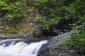 Pocono Flowing Stream — Stock Photo