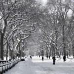 Central Park Mall Winter Scene — Stock Photo #12564759