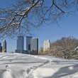 Stock Photo: Skyscrapers and Snow
