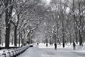 Central Park Mall Winter Scene — Stock Photo