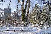 Central park i śnieg — Zdjęcie stockowe