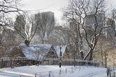 Vinter scen central park — Stockfoto