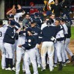 Yankees Celebrate — Stock Photo