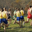Stock Photo: X Country