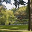 Central Park View — Stock Photo