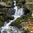 Flowing Stream — Stock Photo