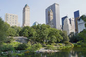 Central Park Duck Pond — Stock Photo