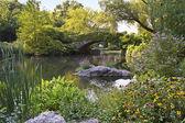 Central Park Stone Bridge — Stock Photo