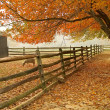 Stock Photo: Fall Barnyard