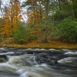 Flowing Bushkill Creek — Stock Photo