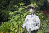 Garden Scarecrow — Stock Photo