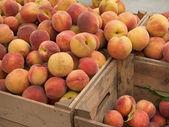 Delightful Peaches — Stock Photo