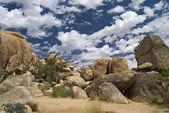 Boulders Joshua Tree — Stock Photo