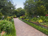 Brookgreen Pathway — Stock Photo