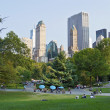 Stock Photo: City View Central Park