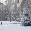 Stock Photo: Snowy Day,Central Park