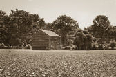 Wooden Shack Sepia — Stock Photo