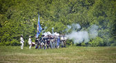Monmouth Battle Scene 10 — Stock Photo