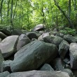 Roaring Rocks Stream — Stock Photo