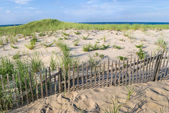 Sand Dunes Nobska Beach — Stock Photo