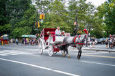 Carriage Ride Central Park — Stock Photo