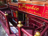 Psychic reader — Stockfoto