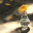 Light bulb with yellow flower — Stock Photo #13710359