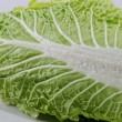 Beijing cabbage, isolated — Stock Photo