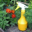 Stock Photo: Garden sprayer