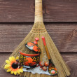 Items, hygiene, broom, clean — Stock Photo #31337879