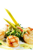 Sea Scallop — Stockfoto