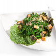 Japanese Cuisine - Seaweed Salad — Stock Photo