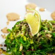 Chuka Seaweed Salad — Photo