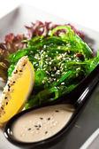 Chuka Seaweed Salad — Stock Photo