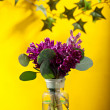 Little Flowers — Stock Photo