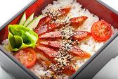 Unagi with Rice — Stock Photo