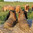 Farmers boots — Stock Photo
