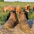 Royalty-Free Stock Photo: Farmers boots