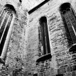 Powerful church windows — Stock Photo #12897794