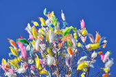 Feathers in the sky — Stock Photo