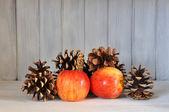 яблоки и сосновые шишки — Стоковое фото
